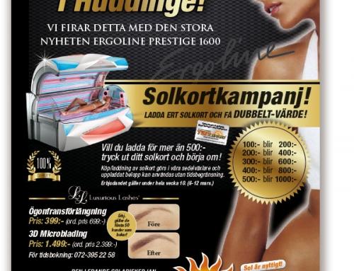 Flyer Tan Express